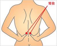 「腎兪 位置」の画像検索結果